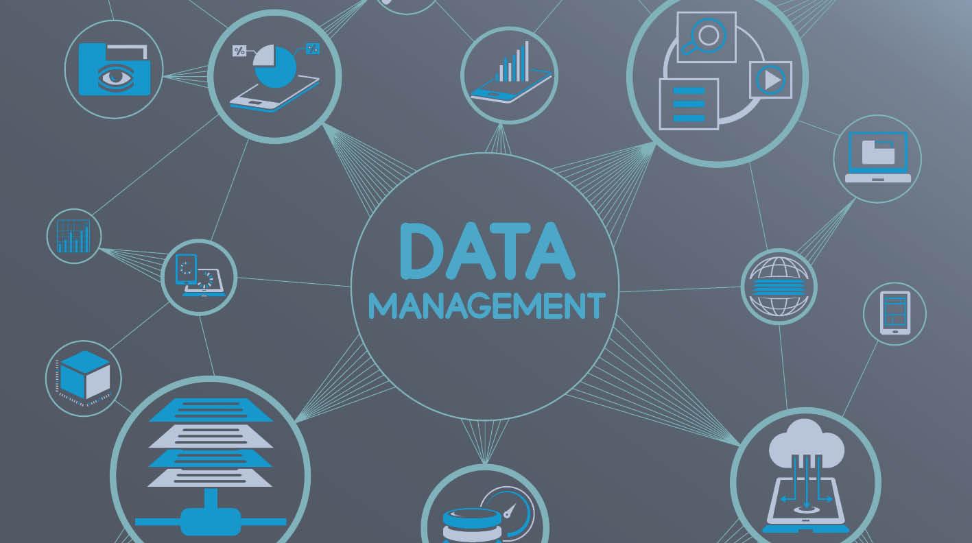 Enterprise Data Management Solution - Case Study