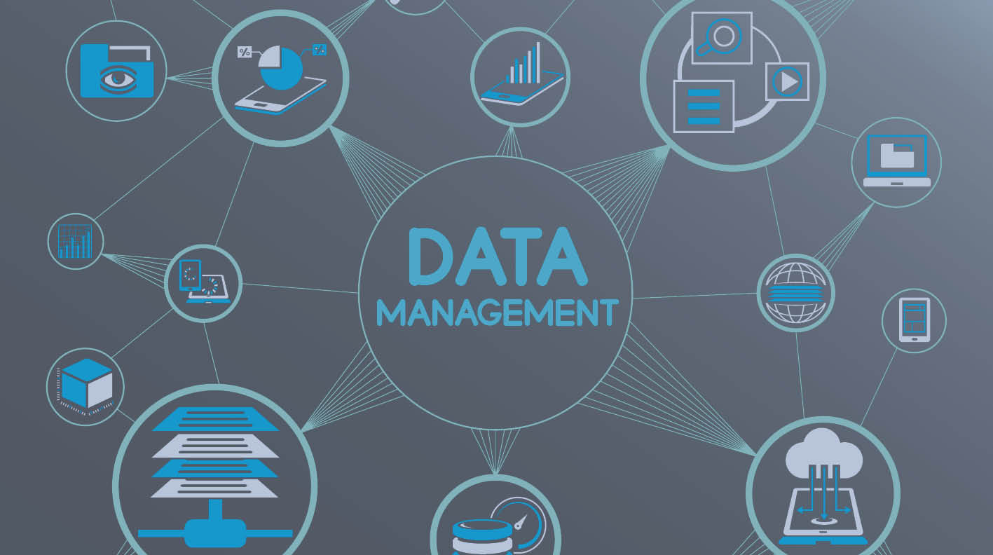 Enterprise Data Management Solution - Case Study