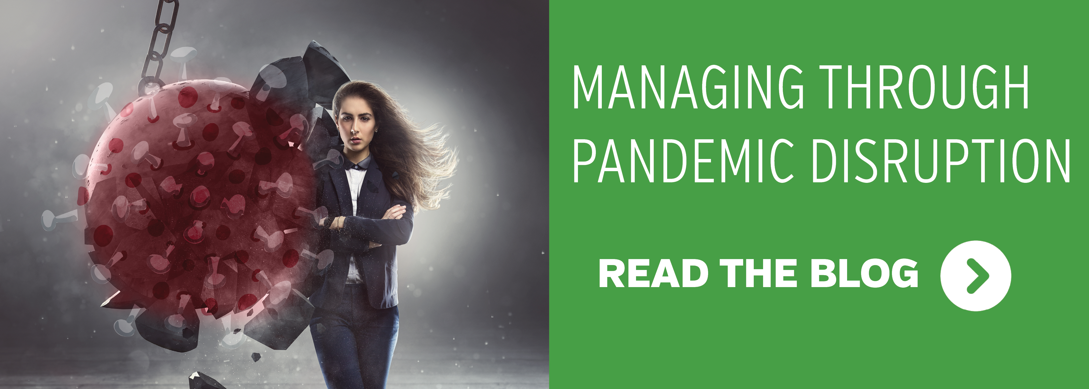 Related Content - Managing Through Pandemic Disruption.  Read the blog