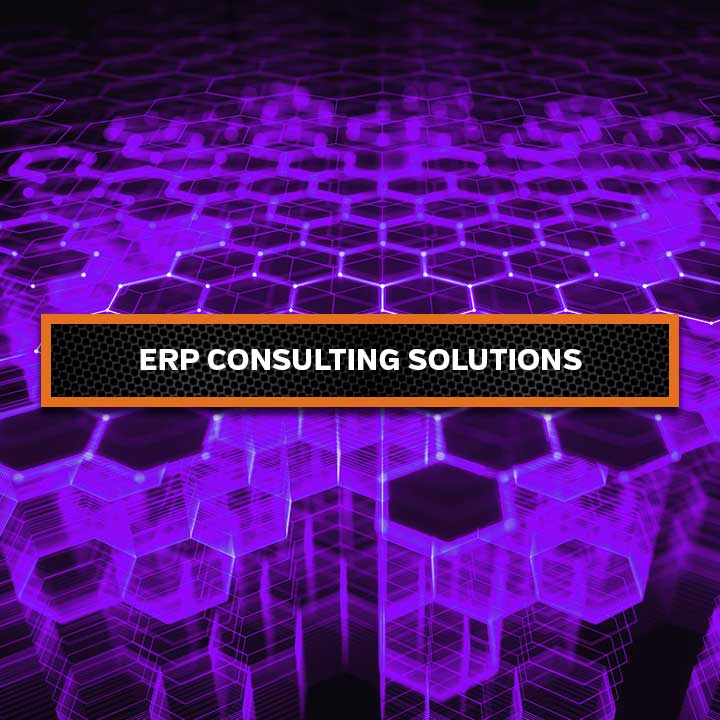 ERP-Consulting-Solutions