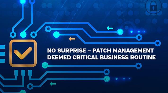 No Surprise - Patch management deemed critical business routine